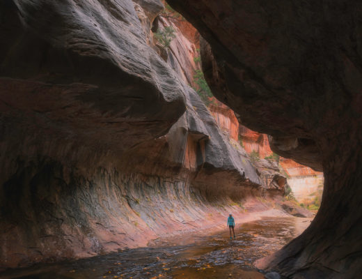 narrows, virgin river, zion, national park, fall, autumn, subway,